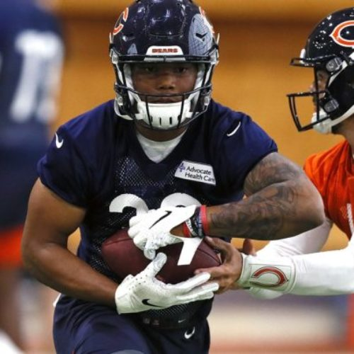 The Bears Picked A Winner In Rookie RB David Montgomery